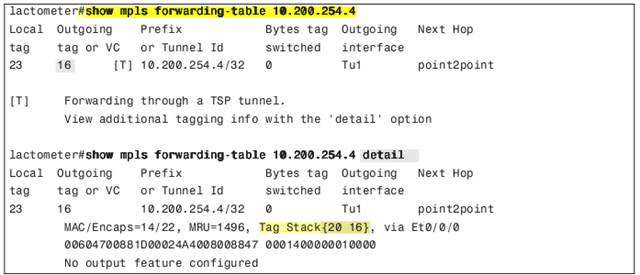 show mpls forwarding-table 2