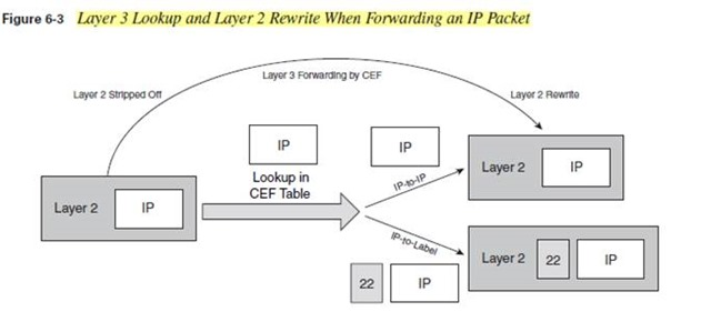 Layer 3 Lookup and Layer 2 Rewrite