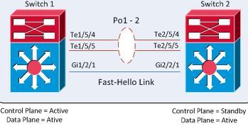 VSS-DualActive-FastHello
