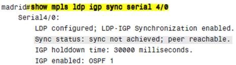 show mpls ldp igp sync